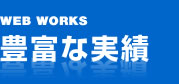 WEB WORKS 豊富な実績